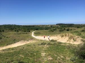 Het Nationaal Park Zuid Kennemerland is een uitgestrekt gebied, ideaal voor trailruns en lange duurlopen.